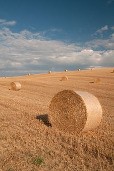 Free Hay Bales And Sky Royalty Free Stock Photos - 17491388