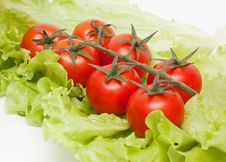 Free Fresh Vegetables. Tomatos Cherry And Green Salad Royalty Free Stock Photography - 17491497