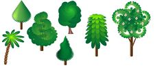 A Collection Of Seven Trees Stock Photography