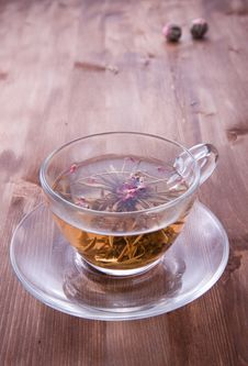 Free Cup Of Green Tea Stock Images - 17493144