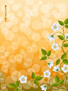 Free Floral Background Stock Photos - 17493833