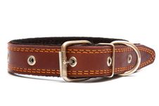 Free Leather Dog Collar Royalty Free Stock Images - 17495639