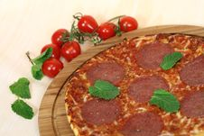 Free Portion Of Fresh Margarita Pizza High Angle Royalty Free Stock Image - 17498336
