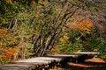 Free Pathway Royalty Free Stock Photos - 1750858