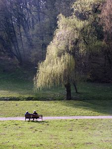 Free Park Couple Stock Image - 1750221