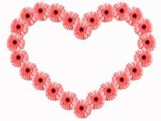 Free Floral Frame Stock Image - 1752251