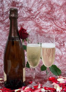 Free Champagne Stock Photo - 1752260