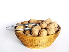 Free Walnuts Royalty Free Stock Photos - 1756068