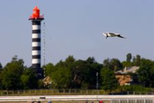 Free Flying Seagull And Lighthouse Stock Images - 1758234