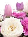 Free Bouquet Stock Photo - 17500910