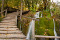 Free Wooden Path Along The Stream In Forest Royalty Free Stock Photo - 17508045