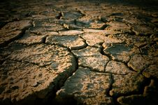 Free The Soil In The Fissures Stock Image - 17500371