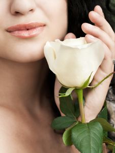 Free Rose At Hand Royalty Free Stock Photos - 17500858
