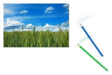Free Image Of Green Wheat Field With Blue Sky On Paper Royalty Free Stock Image - 17500916