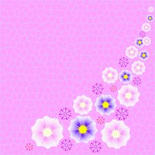 Pink Fuzzy Floral Background Stock Photography