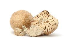 Free Nutmegs Royalty Free Stock Photos - 17501748