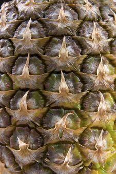 Free Pineapple Texture Stock Photos - 17501863