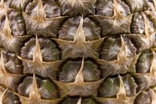 Free Pineapple Texture Royalty Free Stock Image - 17501876