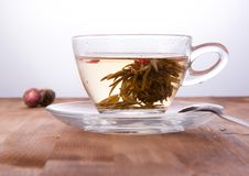 Free Cup Of Green Tea Stock Photography - 17504682