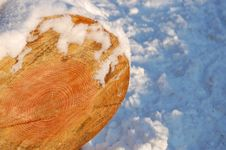 Free A Piece Of Wood With Snow Royalty Free Stock Images - 17504989