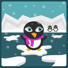 Free Penguins Royalty Free Stock Image - 17509296