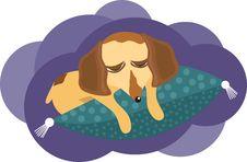 Free Sleeping Dog Stock Images - 17509434