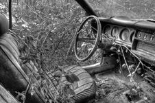 Free Car Reclaimed By Nature Royalty Free Stock Image - 17509586