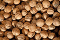 Free Background From Walnuts Royalty Free Stock Photos - 17518668