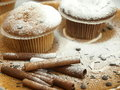 Free Fresh Baked Muffins Royalty Free Stock Photos - 17519968
