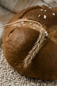 Free Bread Stock Photography - 17510752