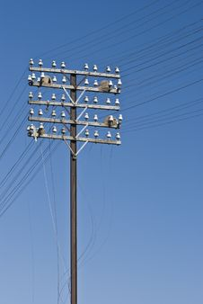 Telegraph Lines Royalty Free Stock Photos