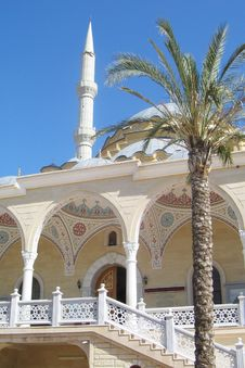 Free Mosque And The Palm Stock Photography - 17511502