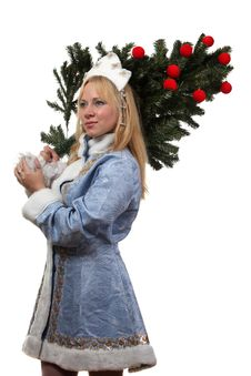 Free Snow Maiden Stock Images - 17515054