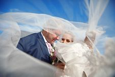 Free Covered With Veil Royalty Free Stock Image - 17515666