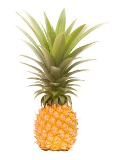 Free Garden Grown Totally Organic Pineapple Royalty Free Stock Image - 17517026