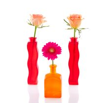 Free Orange Roses And Pink Gerber Stock Photography - 17517282