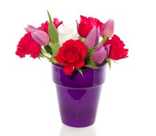 Red Roses And Purple Tulips Royalty Free Stock Photography