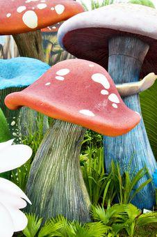 Free Mushroom Stock Photos - 17517923