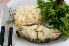 Free Boiled Fish With Rice Royalty Free Stock Images - 17518979