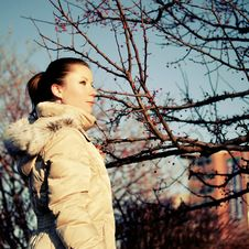 Free Girl In Beige Dawn Parka, Red Berry Tree Stock Photos - 17519303