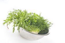 Free Fresh Raw Herbs Stock Image - 17519541