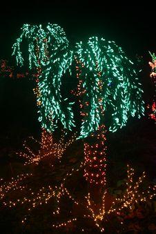 Free Palm Tree Lights Royalty Free Stock Image - 17519596