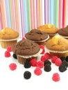Free Fresh Baked Muffins Stock Photo - 17520000