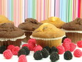 Free Fresh Baked Muffins Stock Images - 17520014