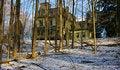 Free Victorian House Through Trees Stock Image - 17522431