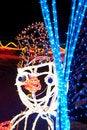 Free Snowman Of Christmas LED Lights Stock Photography - 17525912