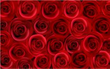 Free Big Bunch Of Red Roses. Vector Stock Photos - 17520193
