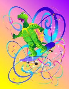 Free Turtle Royalty Free Stock Image - 17520416