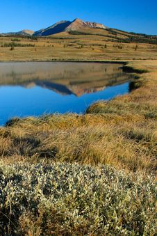 Free Swan Lake, Yellowstone National Park Royalty Free Stock Photography - 17523147