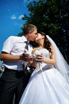 Kiss The Bride And Groom With White Pigeons Stock Photography